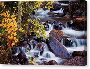 Canvas Print featuring the photograph Autumn Zen by John De Bord