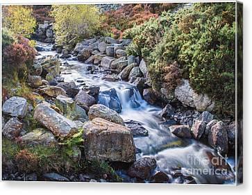 Chris Evans Canvas Print - Autumnal Cascade  by Chris Evans