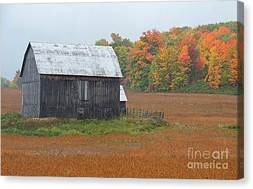 Canvas Print featuring the photograph Autumnal.. by Nina Stavlund