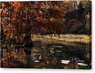 Canvas Print featuring the photograph Autumnal Solace At Lake Murray by Tamyra Ayles