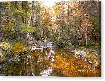 Autumn's Blessings Canvas Print by A New Focus Photography