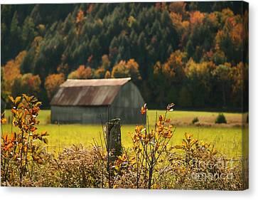 Autumns Colors Canvas Print by Sandra Cunningham