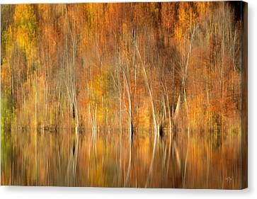 Abstract Water Fall Canvas Print - Autumns Final Palette by Everet Regal
