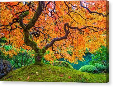 Autumn's Jewel Canvas Print