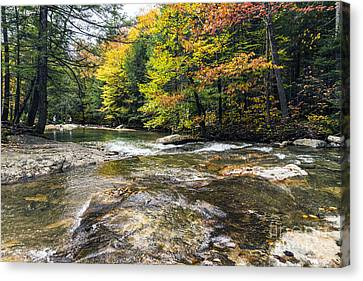 Canvas Print featuring the photograph Autumns Kiss by Anthony Baatz