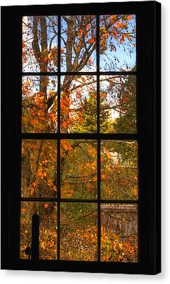Autumn's Palette Canvas Print by Joann Vitali
