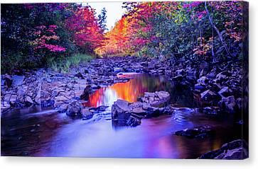 Autumns Pond Canvas Print