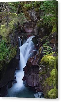 Avalanche Gorge 3 Canvas Print