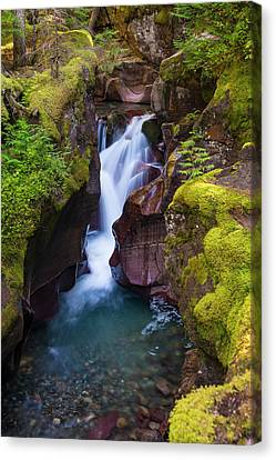 Canvas Print featuring the photograph Avalanche Gorge 4 by Gary Lengyel