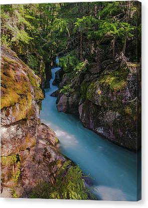 Canvas Print featuring the photograph Avalanche Gorge 5 by Gary Lengyel