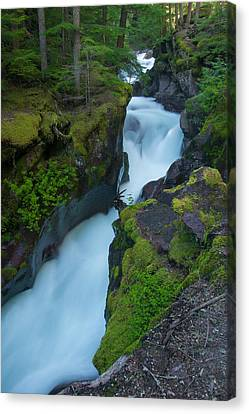 Canvas Print featuring the photograph Avalanche Gorge 6 by Gary Lengyel