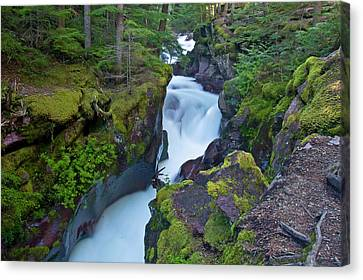 Canvas Print featuring the photograph Avalanche Gorge 7 by Gary Lengyel