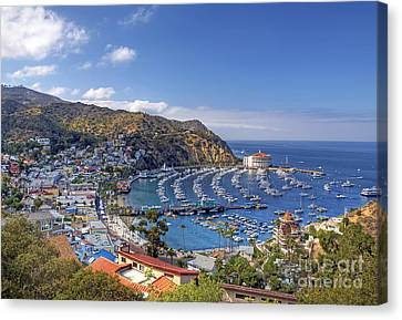 Avalon Canvas Print