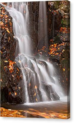 Avalon Falls Canvas Print