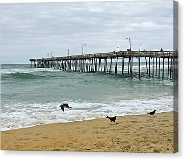 Avalon Fishing Pier Canvas Print by Eve Spring