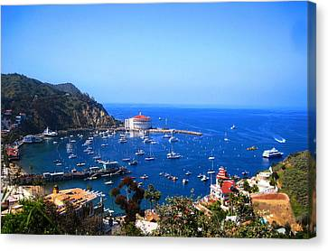 Avalon Harbor At Catalina Canvas Print by Catherine Natalia  Roche