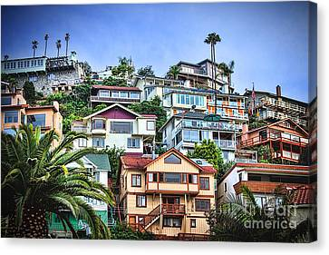Avalon Hillside With Harbor View Canvas Print by Norma Warden