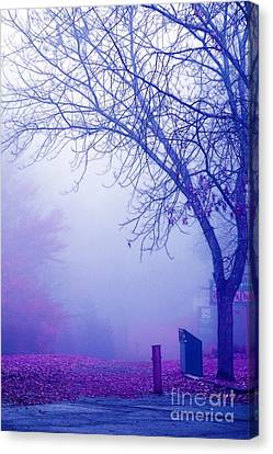 Avant Les Flocons - 02a33c Canvas Print by Variance Collections