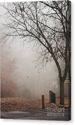 Avant Les Flocons - 1bt1 Canvas Print by Variance Collections