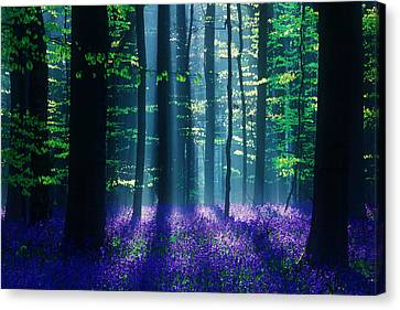 Avatar Canvas Print by Martin Podt