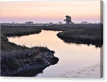 Aveiro Wetlands Canvas Print by Marek Stepan