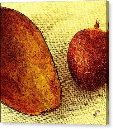 Avocado Seed And Skin II Canvas Print by Ben and Raisa Gertsberg