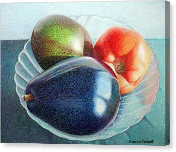 Avocados And A Tomato Canvas Print by Bonnie Haversat