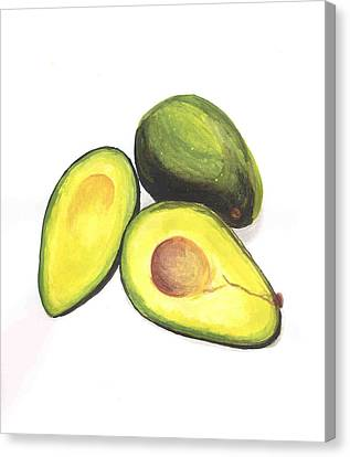 Avocados Canvas Print by David Seter