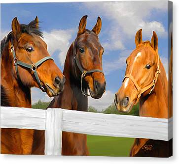 Horse Stable Canvas Print - Awaiting Home by Elzire S