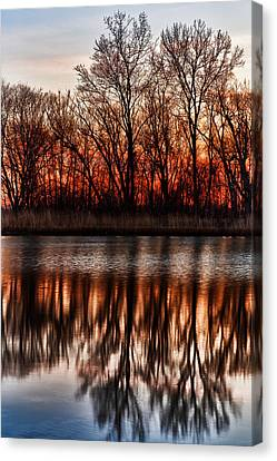 Awakening Canvas Print by James Marvin Phelps