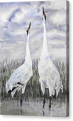 Awakening Canvas Print by Vicky Lilla