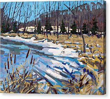 Awakening Wetland Canvas Print by Phil Chadwick