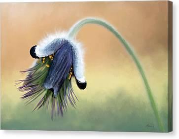 Awaking Bud Canvas Print by Michael Greenaway
