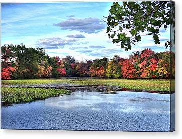 Awesome Autumn Canvas Print by Mikki Cucuzzo