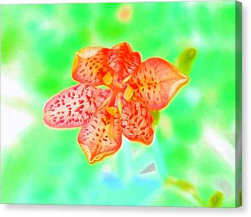 Awesome Leopard Iris Canvas Print