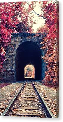 Awesome Natural  Canvas Print