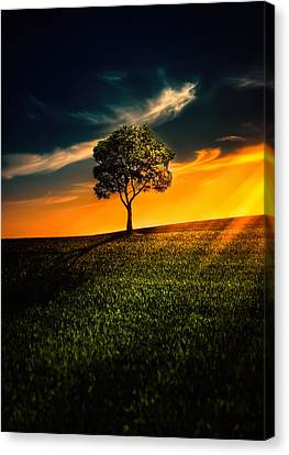 Awesome Solitude II Canvas Print by Bess Hamiti