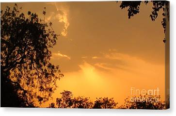 Awesome Summer Evening Canvas Print by Saket Chaudhari