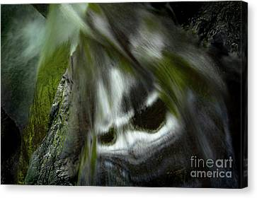 Canvas Print featuring the photograph Awesome by Tatsuya Atarashi