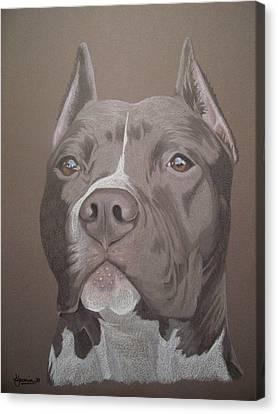 Axl Canvas Print by Stacey Jasmin