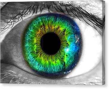 Aye Eye Canvas Print