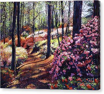 Azalea Forest Canvas Print by David Lloyd Glover