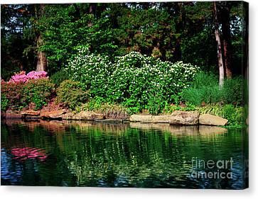 Canvas Print - Azalea Reflection At Honor Heights Park by Tamyra Ayles