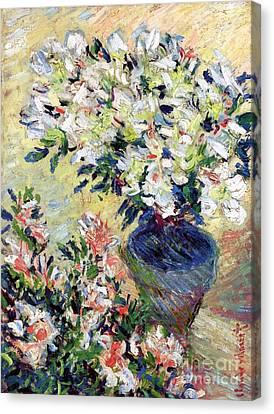 Azaleas Canvas Print by Claude Monet