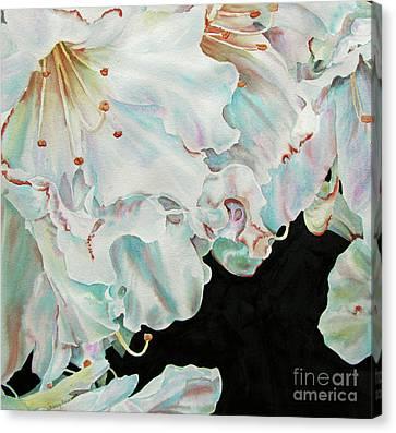 Azaleas-in-italy Canvas Print by Nancy Newman
