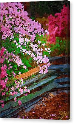 Canvas Print featuring the photograph Azaleas Over The Fence by Donna Bentley