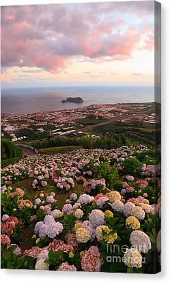 Azorean Town At Sunset Canvas Print by Gaspar Avila