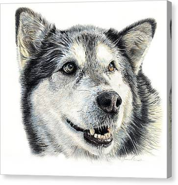 Huskies Canvas Print - Aztec by Joanne Stevens