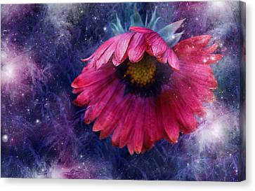 Canvas Print featuring the photograph Azure Claret by Kathleen Stephens