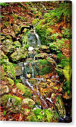 Babbling Canvas Print - Babbling Brook by Olivier Le Queinec